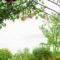 Zahradní oblouky